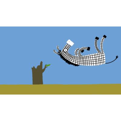 Zebra Filmstill